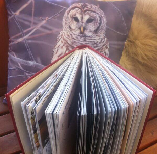 Eine gebundene Jahresausgabe aus WOLL-Magazinen